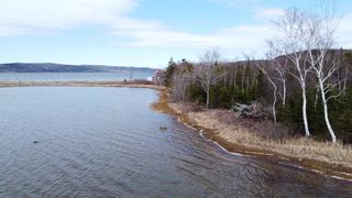 Photo 16: Lot 1&2 East Bay Highway in Big Pond: 207-C. B. County Vacant Land for sale (Cape Breton)  : MLS®# 202108705