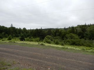 Photo 10: 299 New Lairg Road in New Lairg: 108-Rural Pictou County Vacant Land for sale (Northern Region)  : MLS®# 202117815