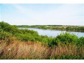Photo 21: Scrivener Acreage: Hague Acreage for sale (Saskatoon NW)  : MLS®# 393157