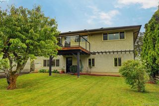 Photo 17: 4051 Hodgson Pl in VICTORIA: SE Lake Hill House for sale (Saanich East)  : MLS®# 842061
