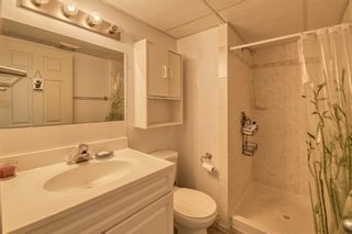 Photo 28: 11 Calandar Road NW in Calgary: Collingwood Detached for sale : MLS®# A1091060