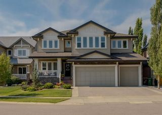 Main Photo: 31 Elgin Estates Point SE in Calgary: McKenzie Towne Detached for sale : MLS®# A1130106