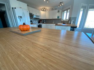 Photo 10: 76 Casa Vista Drive: Rural Sturgeon County House for sale : MLS®# E4266053