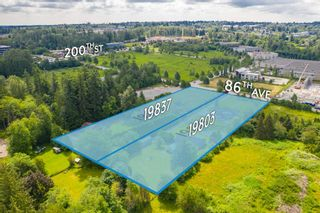 Photo 2: 19837 86 Avenue in Langley: Willoughby Heights House for sale : MLS®# R2531982
