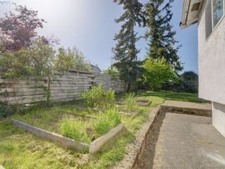 Photo 17: 3246 Irma St in VICTORIA: SW Rudd Park House for sale (Saanich West)  : MLS®# 785071