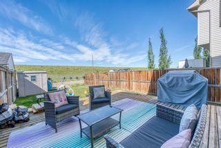 Photo 23: 278 Elgin View SE in Calgary: McKenzie Towne Semi Detached for sale : MLS®# A1121508