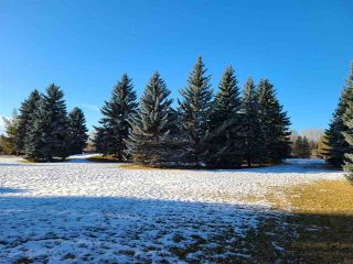 Photo 33: 6 53420 RGE RD 274: Rural Parkland County House for sale : MLS®# E4235414