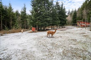 Photo 64: 10015 West Coast Rd in : Sk French Beach House for sale (Sooke)  : MLS®# 866224
