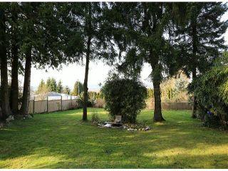 Photo 10: 13231 112B AV in Surrey: Bolivar Heights House for sale (North Surrey)  : MLS®# F1304749