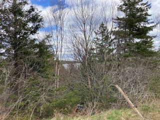 Main Photo: West Liscomb Point Road in West Liscomb: 303-Guysborough County Vacant Land for sale (Highland Region)  : MLS®# 202112030