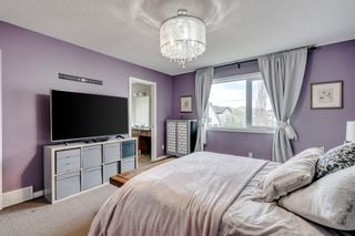 Photo 18: 104 Copperfield Crescent SE in Calgary: Copperfield Detached for sale : MLS®# A1110254