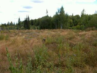 Photo 5: CHIEF LAKE RD in Prince George: Chief Lake Road Land for sale (PG Rural North (Zone 76))  : MLS®# N166508