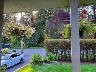 Photo 36: 2112 MACKAY AVENUE in North Vancouver: Pemberton Heights House for sale : MLS®# R2488873