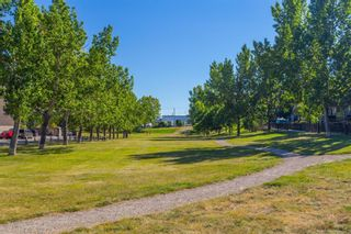 Photo 23: 4628 3 Street NE in Calgary: Greenview Detached for sale : MLS®# A1128741