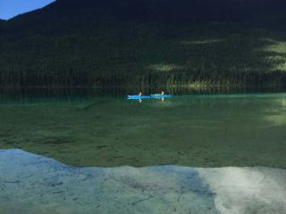 Photo 4: BLK A JOHNSON LAKE FORESTRY Road: Barriere Recreational for sale (North East)  : MLS®# 140377