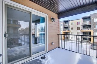 Photo 31: 1214 1317 27 Street SE in Calgary: Albert Park/Radisson Heights Apartment for sale : MLS®# A1070398