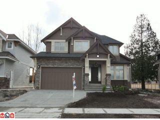 Photo 1: 17328 0A Avenue in Surrey: Pacific Douglas House for sale (South Surrey White Rock)  : MLS®# F1103293