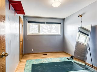 Photo 17: 22 Chancellor Way NW in Calgary: Cambrian Heights Detached for sale : MLS®# A1100498