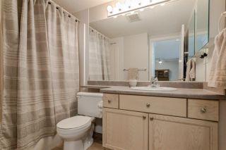 Photo 19: 102 8315 83 Street in Edmonton: Zone 18 Condo for sale : MLS®# E4229609