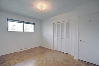 Photo 14: 2618 46 Street SE in Calgary: Forest Lawn Detached for sale : MLS®# A1146875