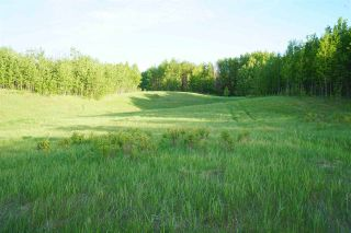 Photo 12: Range Road 233 TWP 520 NW: Rural Strathcona County Rural Land/Vacant Lot for sale : MLS®# E4179287