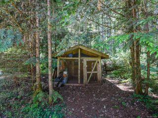 Photo 46: 3875 Dohm Rd in BLACK CREEK: CV Merville Black Creek House for sale (Comox Valley)  : MLS®# 791992