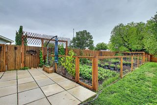 Photo 33: 39 Fonda Green SE in Calgary: Forest Heights Detached for sale : MLS®# A1118511