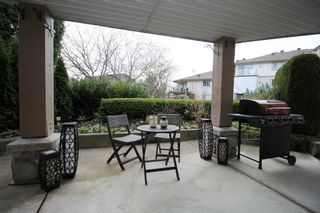 """Photo 13: 116 22150 48 Avenue in Langley: Murrayville Condo for sale in """"Eaglecrest"""" : MLS®# R2421515"""