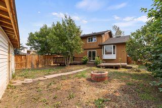 Photo 33: 43 Castlefall Crescent NE in Calgary: Castleridge Detached for sale : MLS®# A1136695