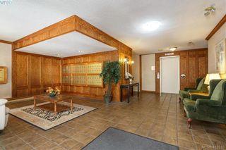 Photo 2: 302 420 Linden Ave in VICTORIA: Vi Fairfield West Condo for sale (Victoria)  : MLS®# 820001