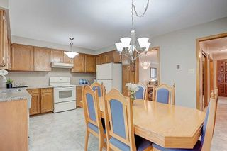 Photo 12: 243 Debborah Place in Whitchurch-Stouffville: Stouffville House (Bungalow) for sale : MLS®# N4896232