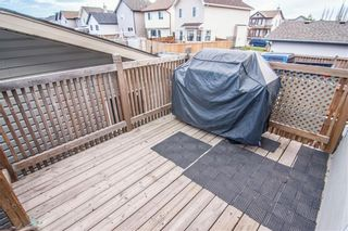 Photo 29: 259 CRANBERRY Place SE in Calgary: Cranston Detached for sale : MLS®# C4214402