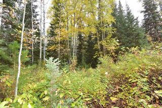 """Photo 7: Lot 8 GLACIER VIEW Road in Smithers: Smithers - Rural Land for sale in """"Silvern Estates"""" (Smithers And Area (Zone 54))  : MLS®# R2410914"""