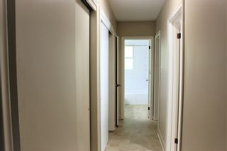 Photo 13: 19 N Elgin Street in Port Hope: Other for sale : MLS®# 40023304