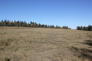 Photo 9: ON Township Road 355A: Rural Red Deer County Land for sale : MLS®# A1039276