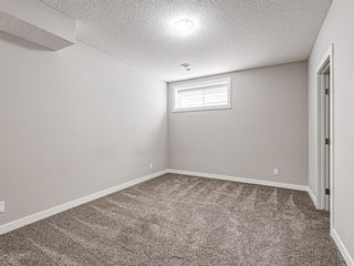 Photo 31: 417 Chinook Gate Square SW: Airdrie Detached for sale : MLS®# A1096458