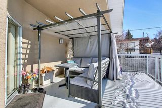 Photo 37: 63 Cromwell Avenue NW in Calgary: Collingwood Detached for sale : MLS®# A1060725