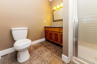 Photo 19: 11839 284 STREET in Maple Ridge: Whonnock House for sale : MLS®# R2373218