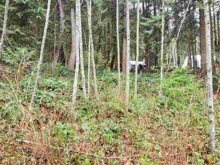 Photo 8: Lot 1 DL 3043: Keats Island Land for sale (Sunshine Coast)  : MLS®# R2554223