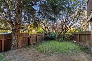 """Photo 14: 2104 MAPLE Street in Vancouver: Kitsilano House for sale in """"Kitsilano"""" (Vancouver West)  : MLS®# R2583100"""