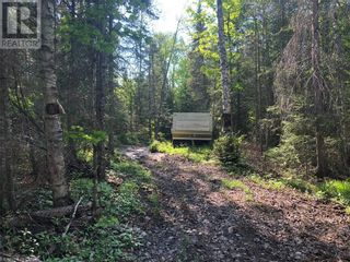 Photo 8: N/A RANEY Road E in Sundridge: Vacant Land for sale : MLS®# 40129602
