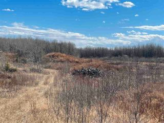 Photo 3: : Rural Westlock County Rural Land/Vacant Lot for sale : MLS®# E4241457
