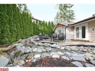 Photo 9: 20476 48TH Avenue in Langley: Langley City House for sale : MLS®# F1008343