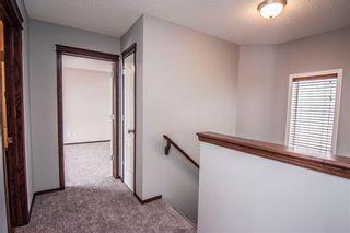 Photo 15: 247 SILVERADO Drive SW in Calgary: Silverado House for sale : MLS®# C4177522