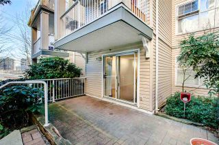 """Photo 3: 209 1035 AUCKLAND Street in New Westminster: Uptown NW Condo for sale in """"QUEEN'S TERRACE"""" : MLS®# R2438580"""