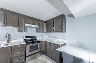Photo 22: 280 Rundlefield Road NE in Calgary: Rundle Detached for sale : MLS®# A1142021