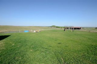 Photo 8: 282002 RGE RD 42 in Rural Rocky View County: Rural Rocky View MD Detached for sale : MLS®# A1037010