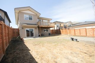 Photo 26: 646 Country Meadows Close: Turner Valley Detached for sale : MLS®# A1102004