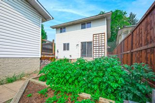 Photo 38: 639 TEMPLESIDE Road NE in Calgary: Temple Detached for sale : MLS®# A1136510