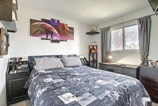 Photo 32: 64 Millrise Close SW in Calgary: Millrise Detached for sale : MLS®# A1099689